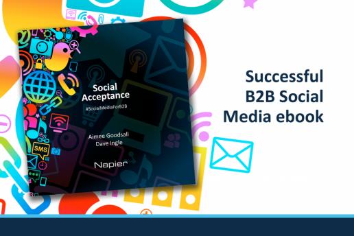 Successful b2b social media ebook