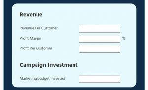 RoI Calculator revenue and campaign investment
